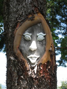 face in tree closeup