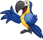 parrotlftt
