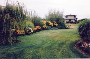 Annies grasses12282014_0001
